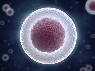 Stem Cells in Plastic Surgery