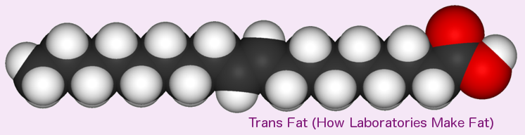 Trans Fat (Elaidic Acid) is also monounsaturated, but this shape is found in only trace amounts in nature.
