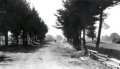 The Crossroads - South Main Street Walnut Creek, CA. looking north in 1849.