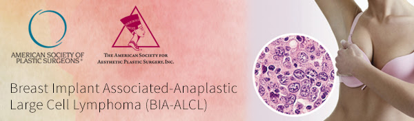 ASPS and ASAPS summary of BIA-ALCL in 2019