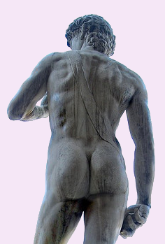 Buttock's created by the real Michelangelo. Coincidentally, David's backside is also as hard as a rock.