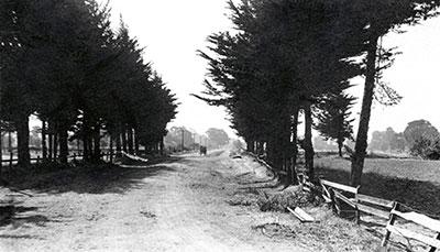 The Crossroads - South Main Street Walnut Creek, CA. looking north in 1849.